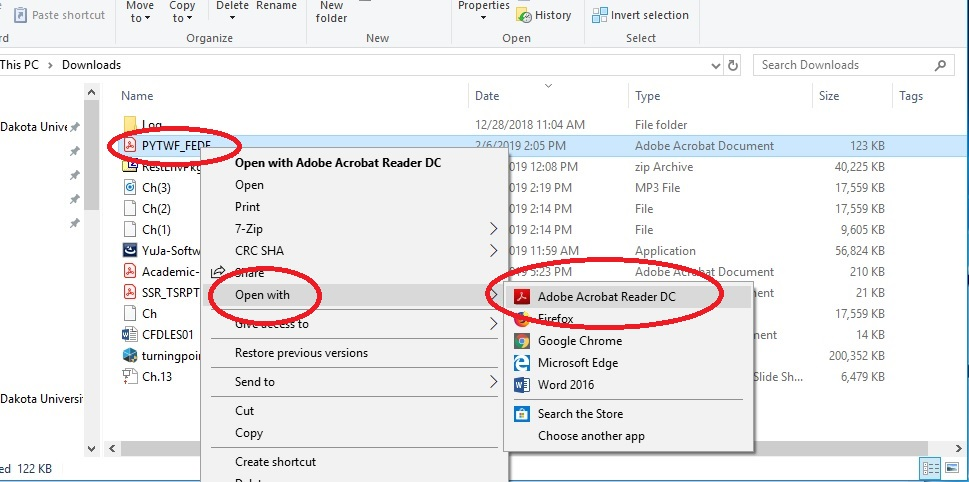 File explorer, a pdf is selected so the drop down menu can be seen, open with and Adobe Reader are circled