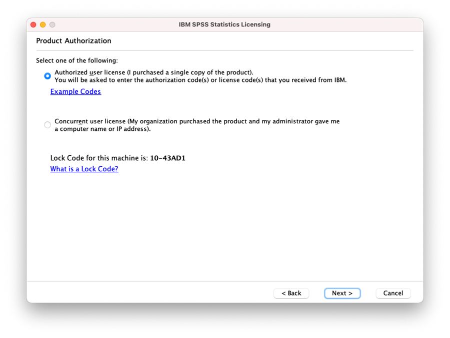 Select the Authorized user license option, then click next