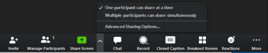 zoom in meeting screen share option screen shot