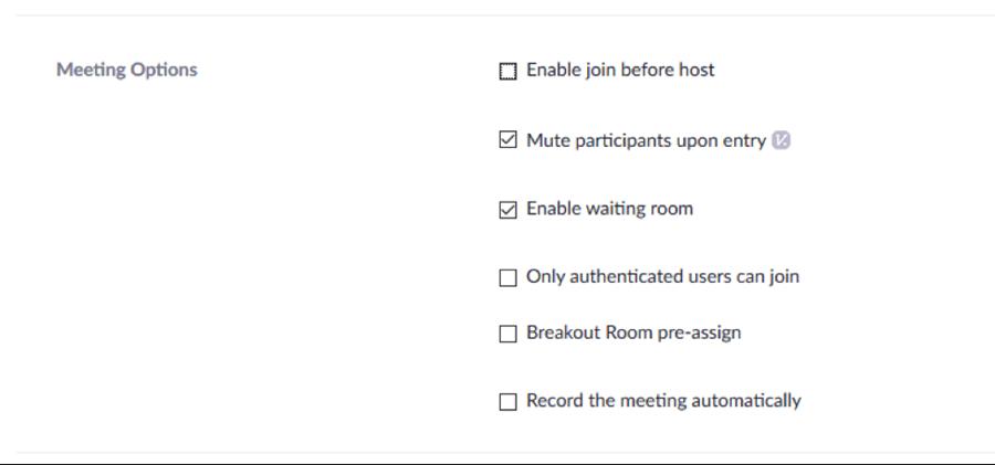 zoom meeting options settings snap shot