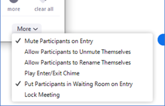 zoom in meeting participant panel options screen shot